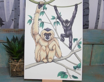 White-Cheeked Gibbons Illustration - A4 Print on 270gsm Card available in 3 Colours