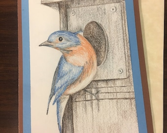 Bluebird greeting Card original colored pencil drawing