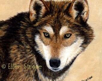 CARD, note card, wolf, wolf cards, wolf decor, wildlife decor, cabin decor, lodge decor, Ellen Strope, castteam