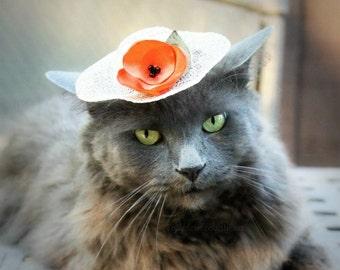 Chapeau de Pâques de Bonnet - chapeau pour chat - fleur Orange Tangerine - chapeau de Hamster, furet, la Guinée Pig
