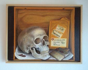 Stillife - mexican skull
