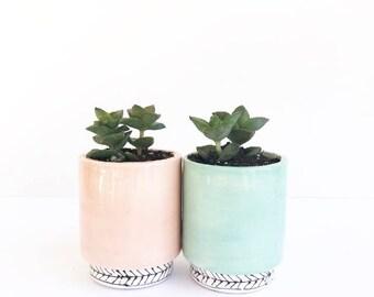 The Luxsy Pot Handmade Ceramic Planter Cactus Pot
