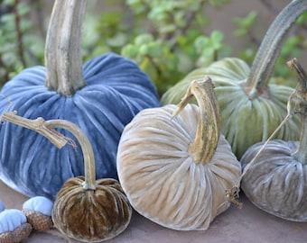 Coastal Dream Silk Velvet Pumpkins and Acorns with Real Stems