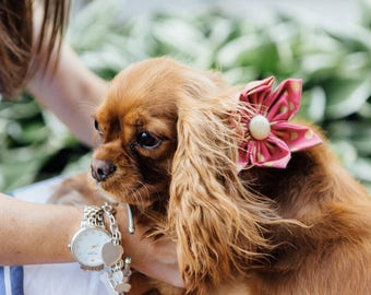 Pink and Gold Polka Dot Girl Dog Flower Bow Tie Collar