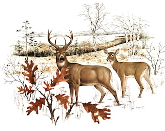 """White Tail Deer w/Mat (Cabin Wall Decor, Wildlife Artwork) """"Buck and Doe"""" -- Vintage Matted Print"""