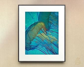 Jellyfish Art // Sea Life // Teal Blue Jellyfish // Ocean art // Home Decor // Fine Art Photograph // 8x10 11x14 Print