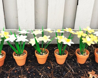 Potted Paper Daffodils