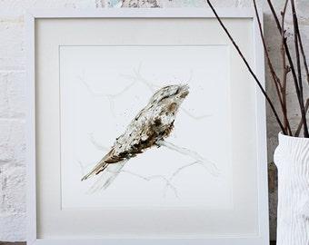 Tawny Frogmouth Art Print Bird Watercolour Illustration giclee art print Australian native bird
