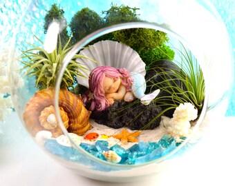 """Little Mermaid Beach Terrarium Kit ~ 7"""" Air Plant Terrarium Kit ~ Coastal Living Beach Decor ~ Sleeping Mermaid on a Rock ~ Gift ~ Christmas"""