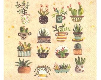 Succulent Luncheon Napkins, Cactus Party, Set of 20 napkins