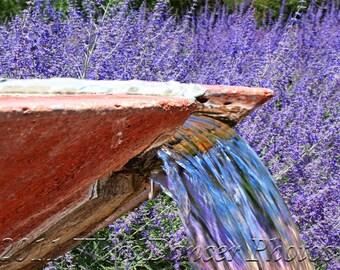Lavender - Fountain - Water - Fine Art Photo - 8 x 10 Matted Photo - Summer - Summer Basics - Home Decor - Southwest - Lavender Field