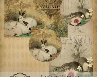 Vintage viktorianischen Kaninchen & Blumen Ostern digitale sofort-Download