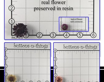 Real Daisy Flower Pendant Preserved in Resin
