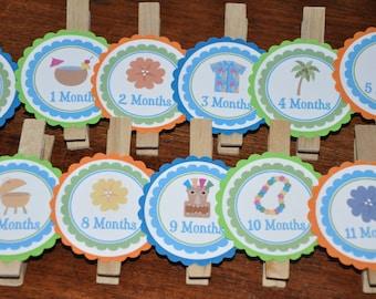 Tiki Photo Clips.Luau. Photo Clips .Beach. Picture Banner. Set of 13. Newborn. 12 months. First Birthday. Blue. Green.Orange