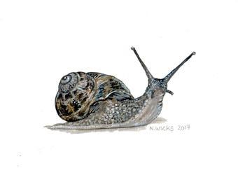 Original Snail Painting, acrylics