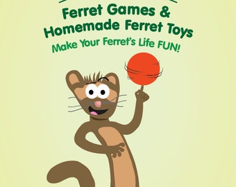 101 Ferret Games And Homemade Ferret Toys
