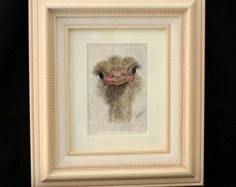 FRAMED PRINT Ostrich, Giclee Print, Birds, Ostrichs. Ostrich Decor, Bird Decor, Home Decor