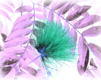 Tropical Stillness-Digital Print