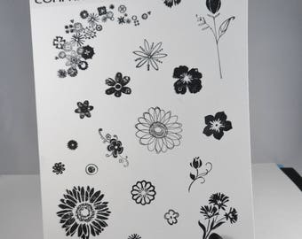 Floral Stamps -- Flower Stamps -- Variety of Flower Stamps