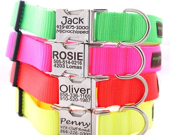 Metal Engraved Neon Dog Collar -- 4 Fluorescent Colors with info Engraved on the Buckle