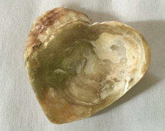Natural Valentine from the San Francisco Bay.  Naturally Congealed Conjoined Oyster Shell Heart