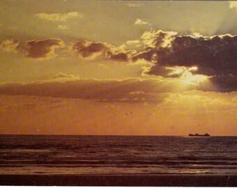 Sunrise Gulf of Mexico Vintage Postcard Collectible Paper Ephemera 1950's