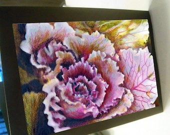 greeting card flowering cabbage floral blank card