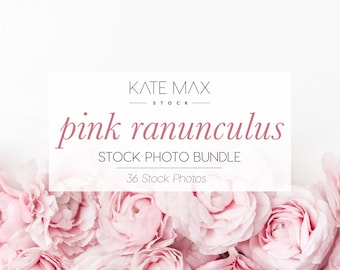 Pink Ranunculus Stock Photo Bundle / Styled Stock Photos / 36 KateMaxStock Flower Branding Images for Your Business