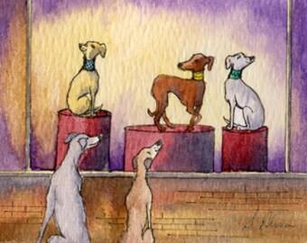 Greyhound whippet dog 8x10 art print - window shopping