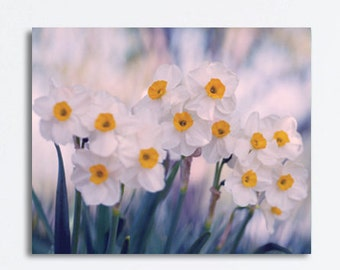 Floral wall decor large wall art, white narcissus flower canvas art, yellow indigo teal artwork, bathroom bedroom living room canvas wrap