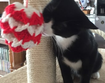 Cat Toy Ball- Benefits Guide Dogs for the Blind