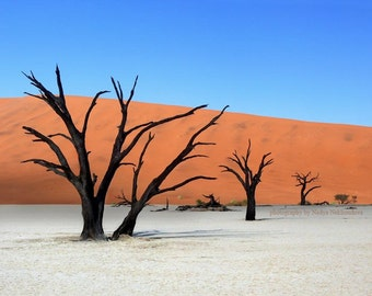 The Silent Desert photo print 8x10 inches (20x25cm) - abstract surreal landscape photography of Africa Namibia