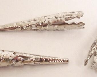1 cone / caps silver 40mm X 2