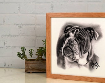 Bulldog pencil sketch, Pet portraits,
