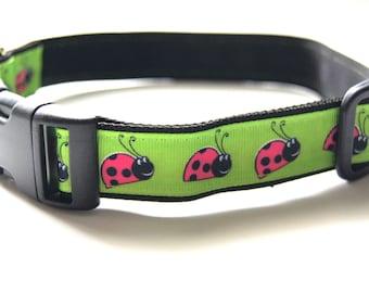Lady Bug Dog Collar Adjustable Sizes (M, L, XL)