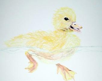Petit canard dessin au crayon de couleur