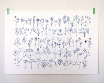 Plants and flowers; artprint 20x30cm (limited edition)