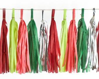 Dr. Seuss Christmas Tassels, Tissue Tassels, Tassel Banner, Christmas Party Decor, DIY Tassels Baby Shower Christmas Seasonal Holiday Winter