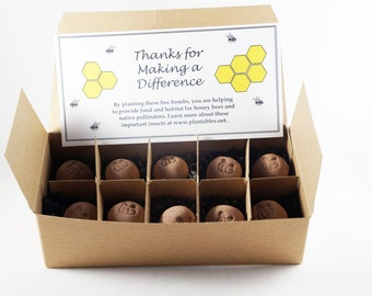 Bee Bombs - wildflower seed balls for pollinators, gift box of 10