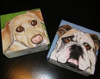 Two Custom Pet Portrait Paintings 6x6 hand painted, dog, cat, bull dog, retriever, pet memorial, gift