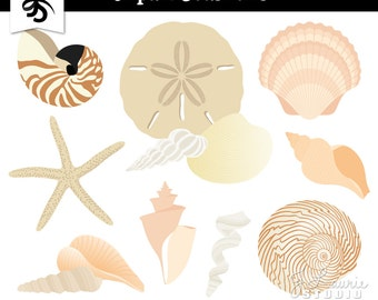 Seashells Digital Clipart-Nautical-Ocean-Beach-Seashell-Starfish-Sand Dollar-Scrapbook Graphics-Digital Elements-Instant Download Clip Art