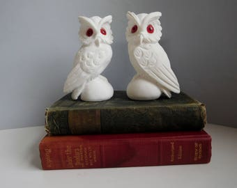 Vintage 1970s owls White owl pair, White chalkware owls, owl bookends