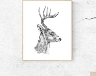 Deer Art, Woodland Deer Art, Deer Print, Deer Art Print, Deer Decor, Deer Wall Art, Deer Poster, Deer Head, Deer Wall Decor, Deer Head Decor