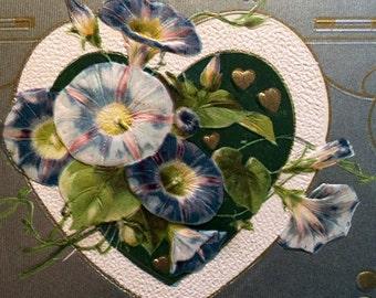 Valentine Postcard - Morning Glory Flowers - Heart - Vintage Postcard
