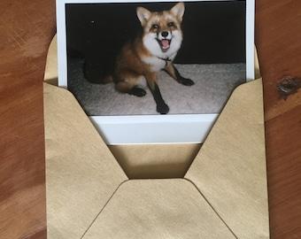 Pre Order The Happiest Polaroids