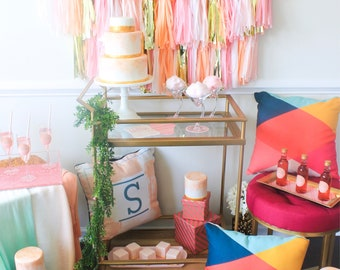 3-8ft Tassel Photo Backdrop|| FREE Shipping ||||| Fully Assembled||| Pick your own colors ||Customizable Tassel Garland Photo Backdrop