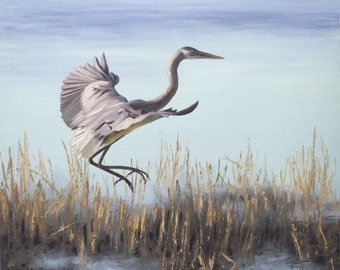 Great Blue Heron 11 x 17 print (image 10.5 x 12.75)  by artist RUSTY RUST / H-48-P