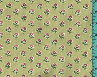 Fleur Jolie color Kiwi Waverly Fabric Home Decor