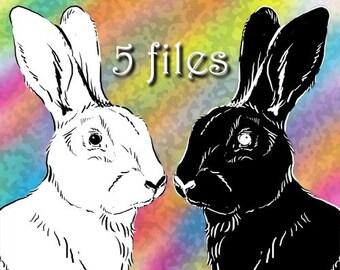 Clip Art Bunny Rabbit Drawing, Easter Digital Stamp, Pet Clip Art, Animal Clipart Sketch Illustration, Digital Download Digistamp