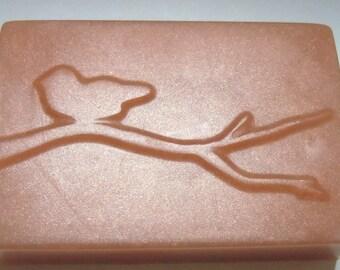 Bird on a Stick Soap 5 oz. - CHOOOSE COLOR & SCENT - Vegan bath gift soap